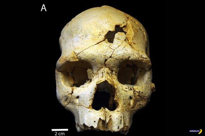 Убит 430 тысяч лет назад