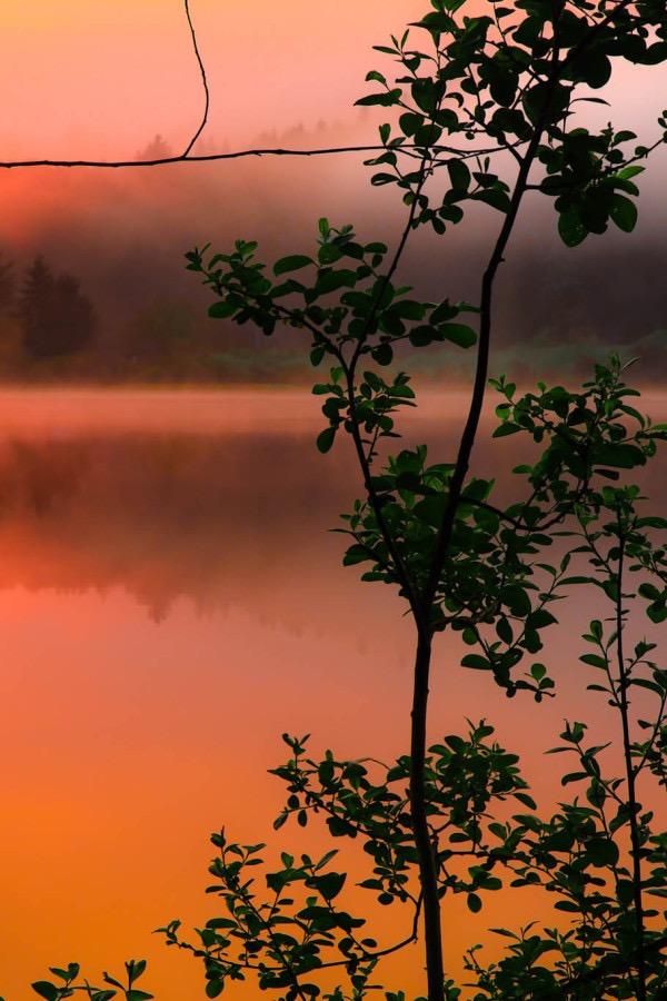 Россыпь красивых фотографий - 82