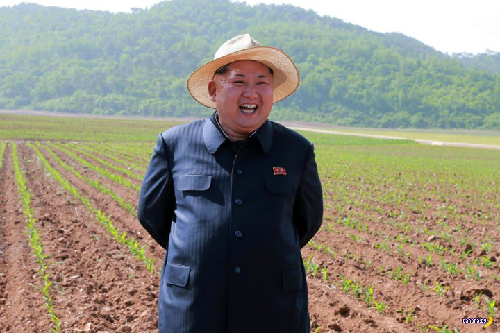 Ким Чен Ын и его летний наряд
