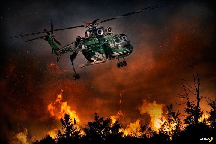 Страшная красота лесных пожаров