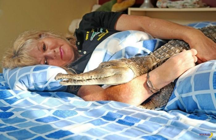 Я и друг мой крокодил