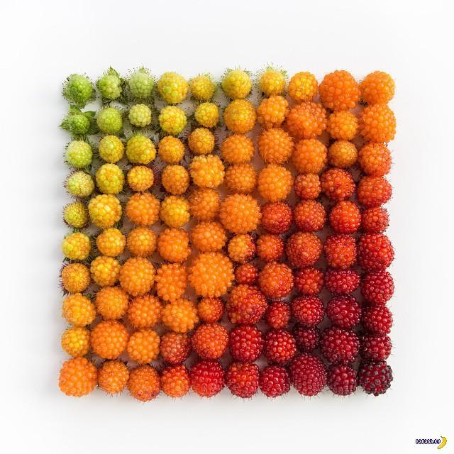 Цветовые градиенты в повседневном