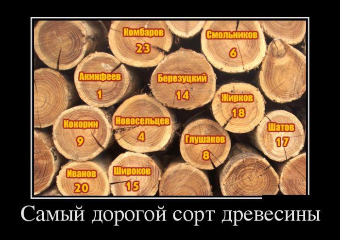Демотиваторы - 471