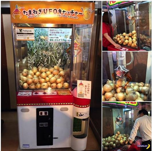 Как японцы продают лук