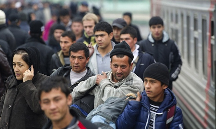 Про трудовых мигрантов и справки для ФМС в России