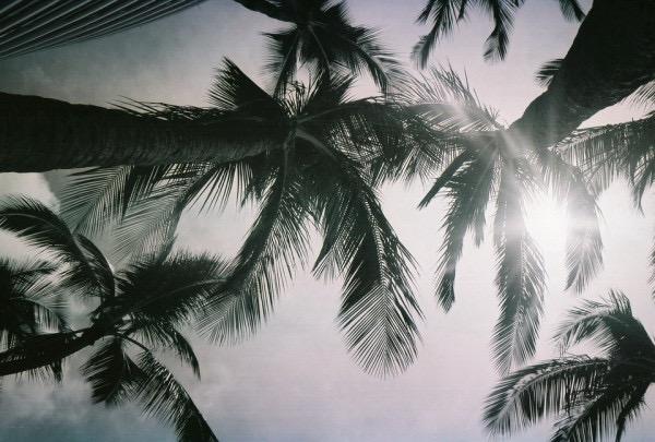 Россыпь красивых фотографий - 86