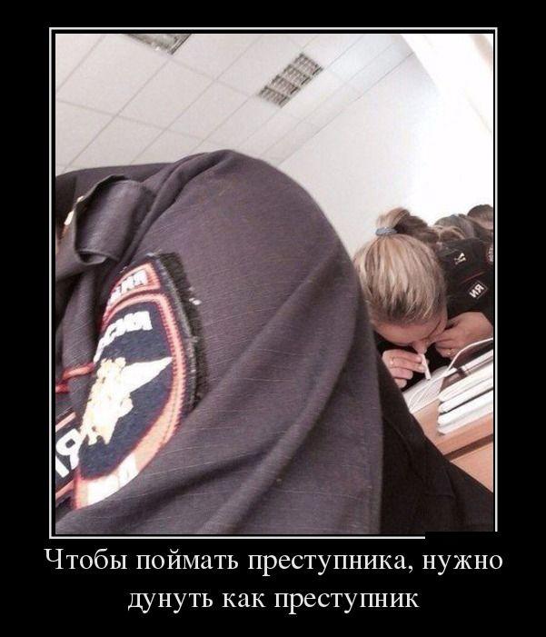 Демотиваторы - 477