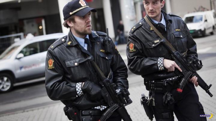 Немного статистики о норвежской полиции