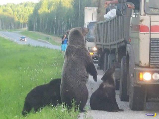 А тем временем в России - 39