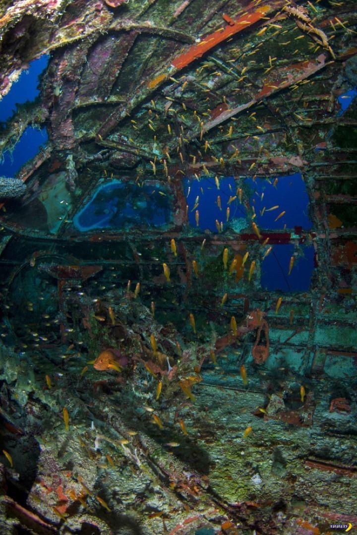 Подводное кладбище самолётов