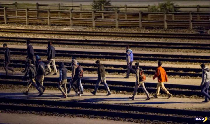 2000 мигрантов штурмовали тоннель в Кале