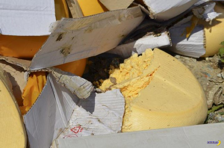 Как в России уничтожали сыр