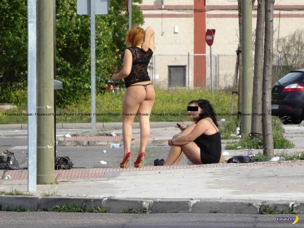 Проститутки В Моде