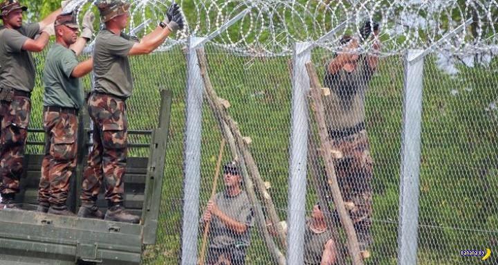 Латвия собирается строить стену на границе с Россией