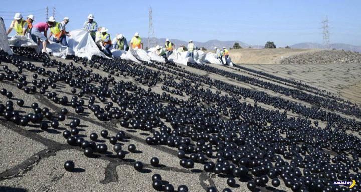 96 миллионов черных шаров