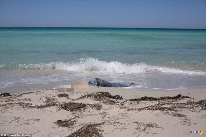 Море возвращает сарацинов домой...