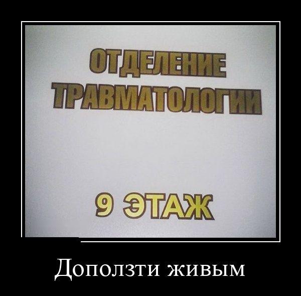 Демотиваторы - 513