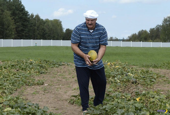 Лукашенко: избранные цитаты про кризис
