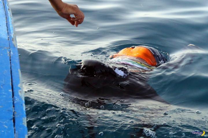 Сотни мигрантов из Ливии утонули