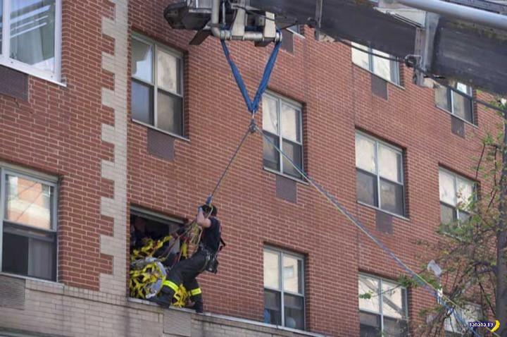 Спасатели и 412 килограмм живого веса