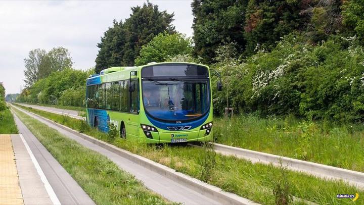 Странные автобусы