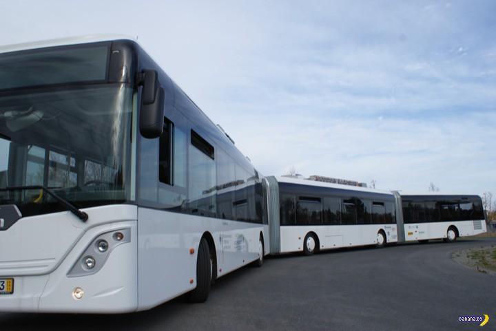 Самый длинный автобус