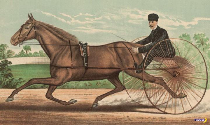 Про конный транспорт