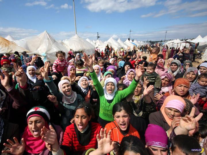 Опрос: беженцы в обмен на безвизовый режим