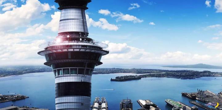 Игорный бизнес в Новой Зеландии