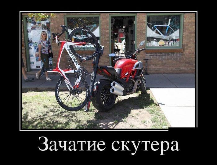 Демотиваторы - 538