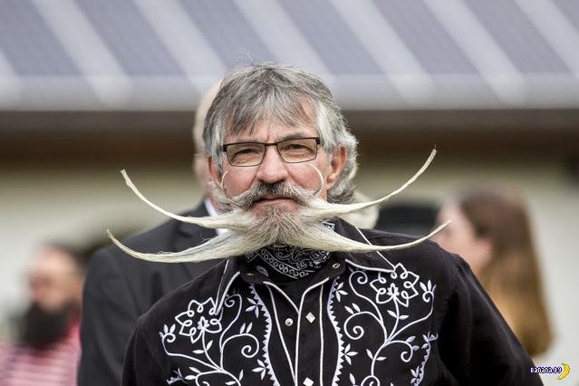 Усачи и бородачи состязались
