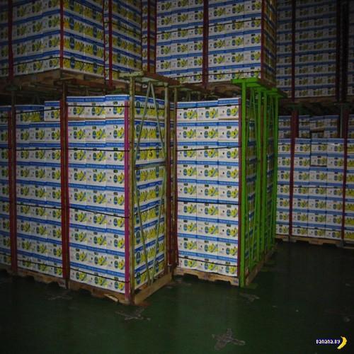 Банановая кража века