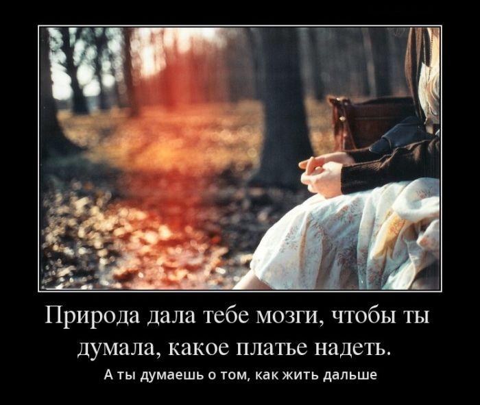 Демотиваторы - 547