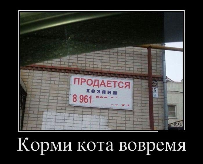 Демотиваторы - 551