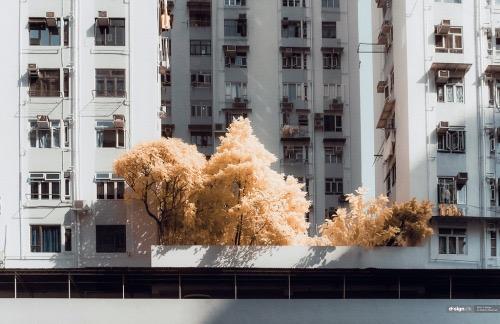 Россыпь красивых фотографий - 102
