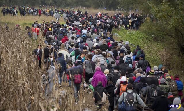 Беженцы на Балканах