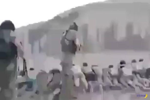 Очередное зверство ИГИЛ - 200 казненных детей
