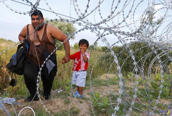 Беженцы: Норвегия психанула