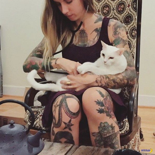 Самостоятельная, независимая, плюс 40 кошек