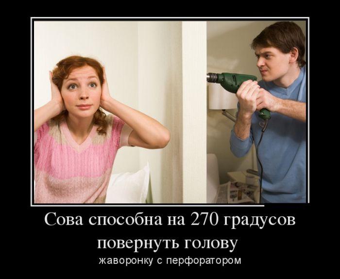 Демотиваторы - 580