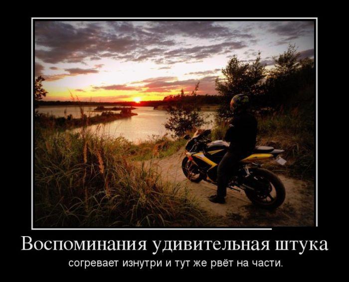 Демотиваторы - 581