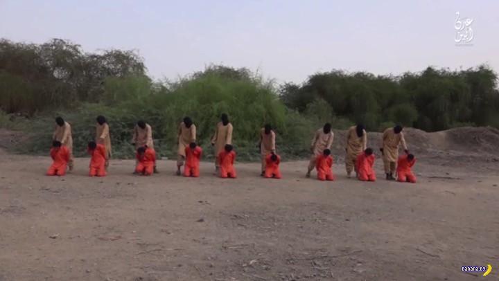 Новое дикое видео с казнями от ИГИЛ