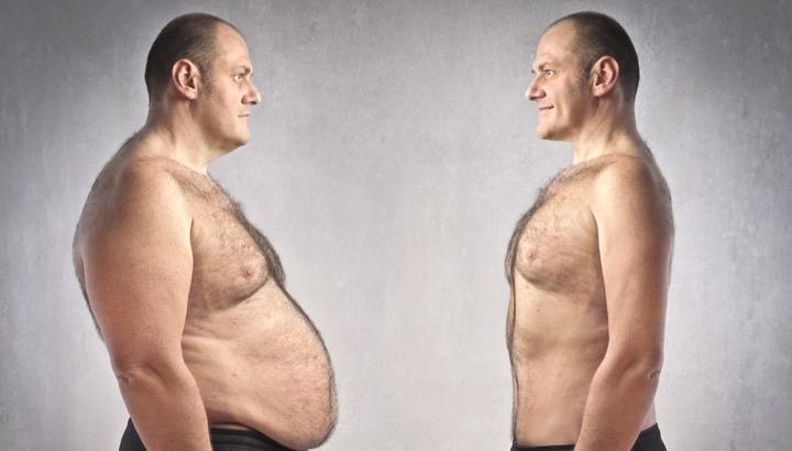 откуда берется жир на животе