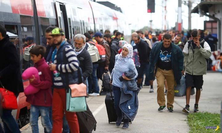 "Беженцы: ""В *опу вашу Австрию!"""
