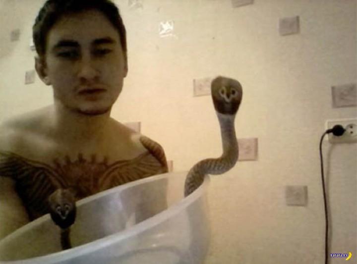 Смерть любителя змей