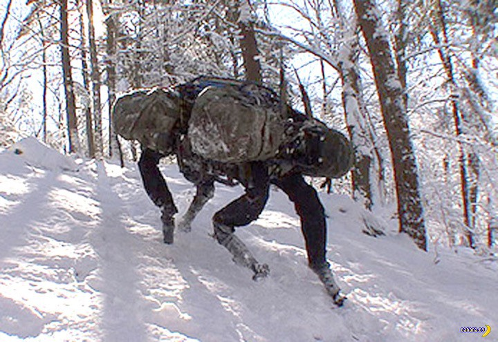 Армия США отказалась от роботов-собак