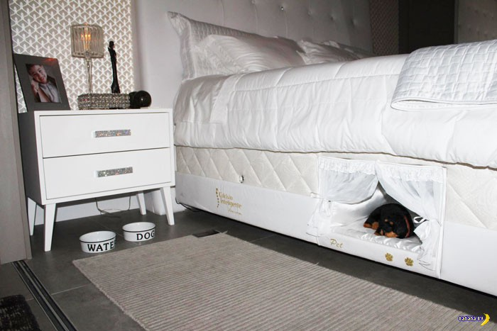 Придумали кровать с домиком для питомцев