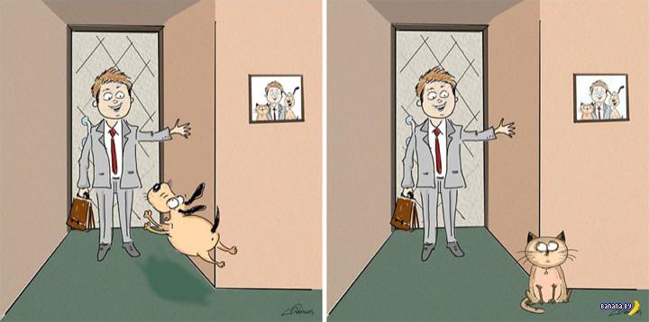 Художник сравнил котов и собак