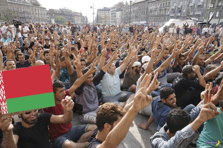 Беларусь примет беженцев!
