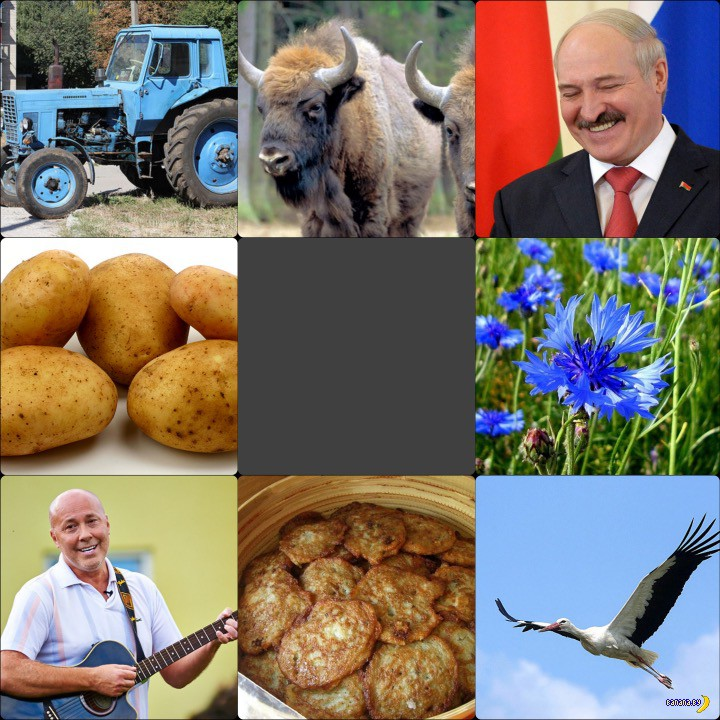 Опрос: главный символ Беларуси